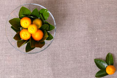 Fresh citrus fruits in the vase Stock Photos