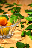 Fresh citrus fruits in the vase Royalty Free Stock Photo