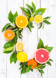 Fresh citrus fruits Stock Photo