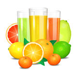 Fresh citrus juice and fruits. Citrus fruits Royalty Free Stock Photography