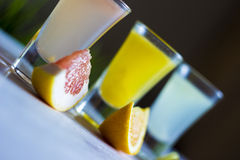 Fresh citrus juices with fruits. On a blur background Royalty Free Stock Photography