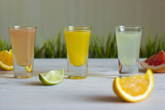 Fresh citrus juices with fruits. On a white background with grass Stock Images
