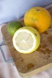 Fresh citrus Royalty Free Stock Image