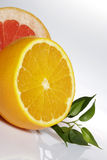 Fresh citrus Royalty Free Stock Photos