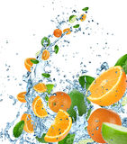 Fresh citrusses in water splash Stock Photo