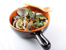Fresh clams in the pot. On white background Royalty Free Stock Photo