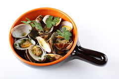 Fresh clams in the pot. On white background Stock Image