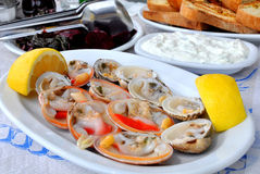 Fresh clams served with lemon Royalty Free Stock Images