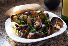 Fresh clams at spanish seafood cafe Royalty Free Stock Image