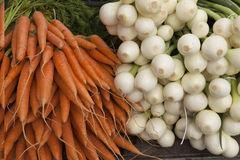 Fresh clean carrots with foliage and onion on the market Stock Photos