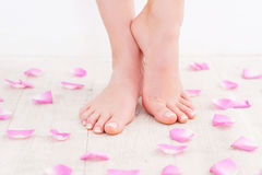 Fresh and clean feet. Stock Photography