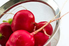 Fresh clean radishes. Fresh clean red  radishes in a strainer over a white background Stock Images