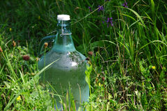 Fresh and clean water bottle in high grass Royalty Free Stock Photography