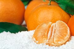 Fresh clementines in snow Stock Photos