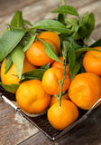 Fresh clementines in the basket. Fresh clementines with leaves in the basket on wooden board Stock Photo