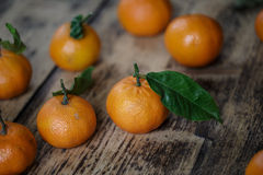Fresh Clementines Royalty Free Stock Photography