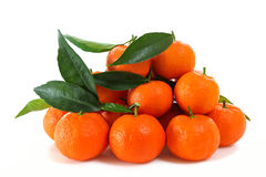 Fresh clementines organic farming, on a white background Stock Image