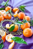Fresh clementines on purple Stock Photo
