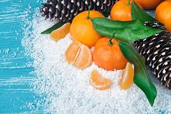 Fresh clementines in snow Royalty Free Stock Photo