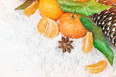 Fresh clementines in snow Royalty Free Stock Images