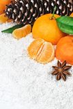 Fresh clementines in snow Royalty Free Stock Image