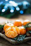 Fresh Clementines or Tangerines in the Basket Royalty Free Stock Photo