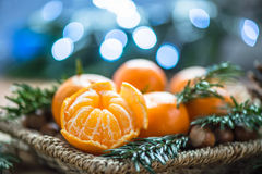Fresh Clementines or Tangerines in the Basket Stock Photography