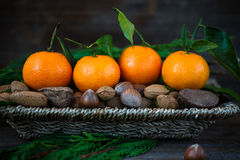 Fresh Clementines or Tangerines in the Basket Stock Images