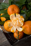 Fresh clementines whole and one peeled. In the basket, on wooden table Royalty Free Stock Photos