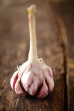Fresh cloves of aromatic garlic Stock Image