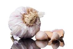 Fresh cloves of organic garlic Stock Image