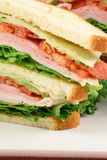 Fresh club sandwich meal Stock Images