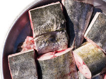 Fresh cobia fish fillet. Royalty Free Stock Photos