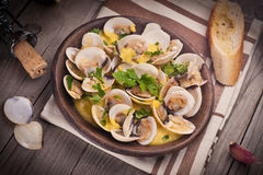 Fresh Cockle clams (Venus, Meretrix) with wine sauce. Portuguese Royalty Free Stock Image