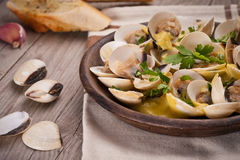 Fresh Cockle clams (Venus, Meretrix) with wine sauce. Portuguese Stock Photo