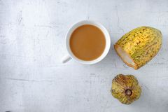 Fresh cocoa fruit and a cup of hot cocoa. stock image