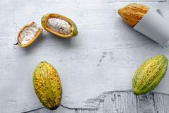 Fresh cocoa fruit stock images