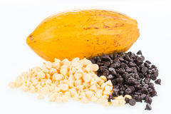 Fresh cocoa pod and chocolate chips Royalty Free Stock Image