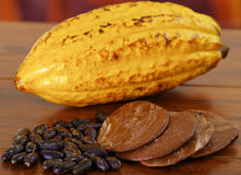 Fresh cocoa pods and dark dry cocoa bean with some pieces of dark chocoloate over a wooden background.  Royalty Free Stock Photos