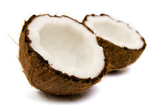 Fresh coconut Stock Photography
