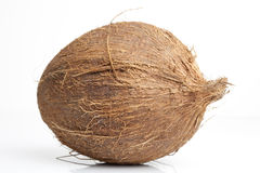 Fresh coconut Stock Photo