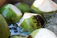 Fresh coconut Royalty Free Stock Image