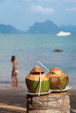 Fresh coconut. And coupel walking on thebeach Royalty Free Stock Images