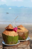 Fresh coconut. Two fresh coconut on a beach Royalty Free Stock Image