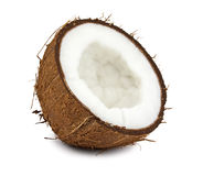 Fresh coconut Stock Image