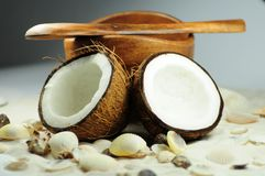 Fresh Coconut Royalty Free Stock Photo