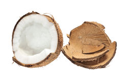 Free Fresh Coconut And Coconut Shells Stock Photography - 24778092