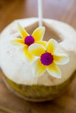 Fresh coconut beverage Stock Image