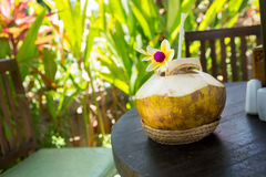 Fresh coconut beverage Stock Images