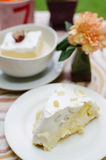 Fresh coconut cake with cream Stock Photography